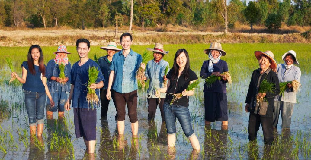 Jasberry - der Reis für eine bessere Welt